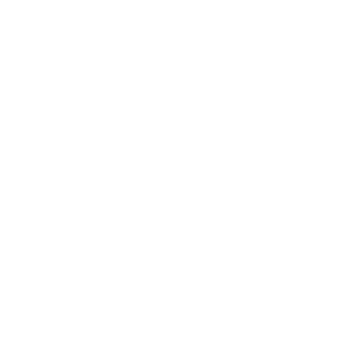 BIG language school